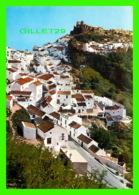 CASARES, SPAIN - VISTA PARCIAL - VUE PARTIELLE - EDOCIONES SOM-CEREZO - - Autres