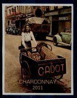 THEME LOCOMOTION étiquette De Vin CHARDONNAY / VÉLO TRIPORTEUR - Ciclismo