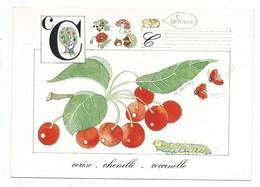 CPM Alphabet De La Nature La Lettre C Comme CERISE CHENILLE COCCINELLE Illustrateur Monique Touvay , Non Voyagée - Botanik