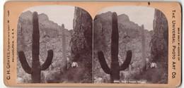 Stereo-Fotografie C. H. Graves, Philadelphia, Ansicht Devil`s Canyon, Arizona - Photos Stéréoscopiques