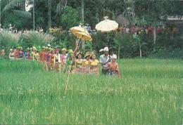 INDONESIA BALI - Indonesia