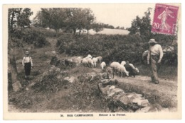 Nos Campagnes, Retour à La Ferme. Carte Expédiée D'Objat, Corrèze (7575) - France