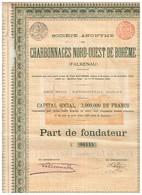 Ancienne Action - Société Anonyme Des Charbonnages Nord-Ouest De Bohême - Falkenau - Titre De 1899 - N° 06445 - Mines