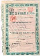 Ancienne Action - Société Des Mines De Wolfram De Braga - Titre De 1903 - N° 01.163 - Mines
