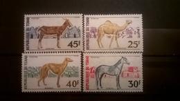 FRANCOBOLLI STAMPS CIAD TCHAD 1972 MNH** NUOVI SERIE COMPLETA ANIMALI DOMESTICI DOMESTIC ANIMALS - Ciad (1960-...)
