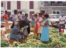 Saint Martin (Antilles  Cf Guadeloupe) Scène De Marché  ((PPP16453) - Postcards