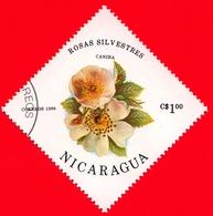 NICARAGUA  - Nuovo - 1986- Fiori - Flowers - Fleurs - Rosa Canina - 1.00 - Nicaragua