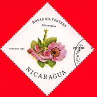 NICARAGUA  - Nuovo - 1986 - Fiori - Flowers - Fleurs - Roses Eglantine - 3.00 - Nicaragua