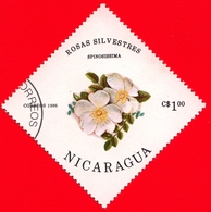 NICARAGUA  - Nuovo - 1986- Fiori - Flowers - Fleurs - Roses Spinosissima - 1.00 - Nicaragua