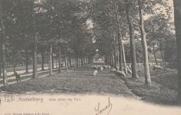 Koekelberg, Une Allée Du Parc - Koekelberg