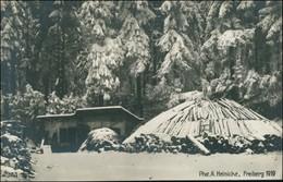 .Sachsen Holzkohlenbrennerei Im Erzgebirge Meiler Und Hütte 1919 - Deutschland