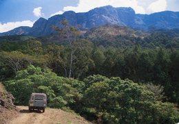 Malawi - Zomba Mountain - Malawi