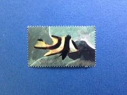 1998 - 29 CINA CHINA FRANCOBOLLO USATO STAMP USED - PESCI 200 ( 8 - 6 )T - 1949 - ... Repubblica Popolare