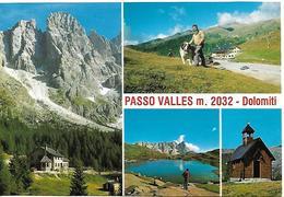 115-9G RIFUGIO CAPANNA PASSO VALLES - Italia