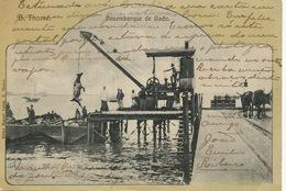 S. Tomé Principe Desembarque De Gado  Edicion Manuel Lança  . P. Used Stamped . One Cut At The Lower Part - Sao Tome Et Principe