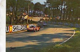 24 Heures Du Mans -  Dans Les 'S' Du Tertre Rouge  -   Ferrari - DB   -   Carte Postale - Le Mans