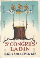 5° CONGRESSO LADINO - UDINE 27.31 Luglio 1966 - Società Filologia Friulana - Manifestazioni