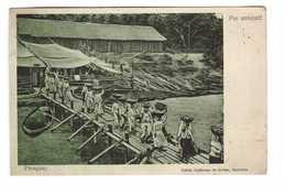 Paraguay Por Amistad + Timbre 5 Timbres Dont Bande Attachée De 3 Timbres Pour La France 1907 - Paraguay