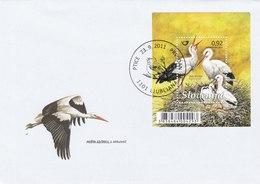 Fauna - Ciconia Ciconia - Stork / Ooievaar - Storks & Long-legged Wading Birds