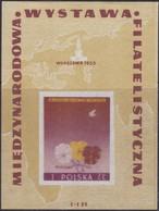 Polen   .  Yvert   Block  16  (Marke:  **)    .    *    .   Ungebraucht Mit Gummi Und Falz  .   /  .   Mint Hinged - Blokken & Velletjes