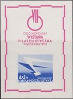 Polen   .  Yvert   Block  19  (Marke:  **)    .    *    .   Ungebraucht Mit Gummi Und Falz  .   /  .   Mint Hinged - Blocks & Kleinbögen