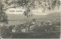 SAN REMO - Tra Gli Olivi - LIGURIA - ITALY - San Remo