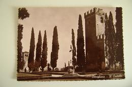 - CONEGLIANO   CASTELLO CASTLE   VENETO - TREVISO -  VIAGGIATA  COME DA FOTO - Treviso