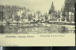 """""""Paysages D'hiver""""  L'étang Bergh Et Le Bois D'Ospot - Neufchâteau"""