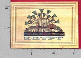 CARTOLINA VG EGITTO - EGYPT - Simbologia E Geroglifici - 11 X 16 - ANN. 19?? - Africa