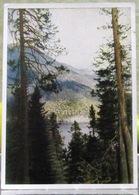 Abkhazia Georgian USSR Postcard 1946 Lake Ritsa Forest Landscape Russian Postcard - Russia