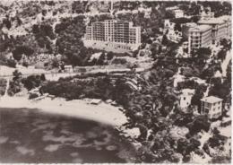 Cpsm Grand Format CAP D'AIL MONACO - Vue Aérienne - Parc Eden Plage - Monaco