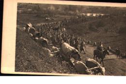 SERBIA - 1915 : SERBIAN ARMY RETREATING ACROSS RIVER MORAVA / L'ARM?E SERBE EN RETRAITE - RIVI?RE MORAVA - Weltkrieg 1914-18