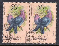 BARBADOS - 1979 50c RED-NECKED PIGEON BIRD PAIR FINE USED CDS REF B SG 633 X 2 - Barbados (1966-...)