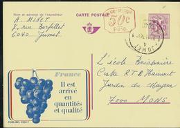 Publibel Obl. N° 2560 + P 010 ( France Le Raisin ) Obl. Jumet - Entiers Postaux
