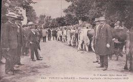 VIRIEU Le GRAND Comice Agricole 14 Septembre 1913 - France
