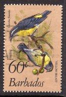 BARBADOS - 1982 60c BANANAQUIT BIRD GOOD USED REF B SG 633b - Barbades (1966-...)
