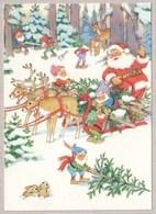 Santa Claus Is Bringing Christmas Trees With Reindeers Sleigh & Seven Little Dwarves - Santa Claus