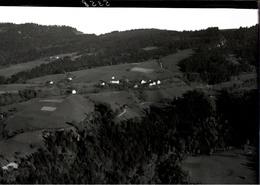 ! Bregenz, Eichenberg, Luftbild 1927, Moderner Abzug Nr. 5358, Format 17,8 X 12,7 Cm - Bregenz