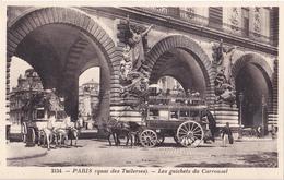 BAD- PARIS QUAI DES TUILERIES LES GUICHETS DU CARROUSEL CPA  CIRCULEE - France