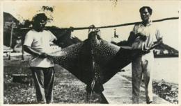 Archipel Des Fidjis, Photo-carte De 2 Pêcheurs Avec Une Raie, Beau Document - Fidji