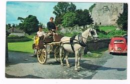 EIRE-104   KILLARNEY : Irish Jaunting Car At Ross Castle ( Volkswagen Beetle) - Kerry