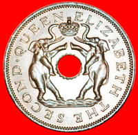 # ELEPHANTS: RHODESIA AND NYASALAND ★ 1 PENNY 1955 MINT LUSTER! LOW START ★ NO RESERVE! - Rhodésie