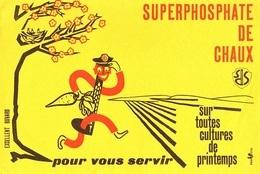 BUVARD  Marque  SUPERPHOSPHATE  DE  CHAUX  Pour  Vous  Servir - Collections, Lots & Series