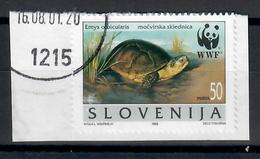 SLOVENIA  1996 -  WWF TARTARUGA - USATO SU FRAMMENTO - Slovenia