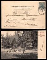 ANTICHI STATI - AUSTRIA TERRITORI ITALIANI - Montagnana Di Pinè (nero-P.ti 6) - Cartolina (il Palustello) Per Breno Del  - Francobolli