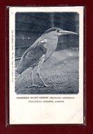ANIMAUX-CPA ZOOLOGICAL GARDEND LONDON - NANKEEN NIGHT-HERON - Birds