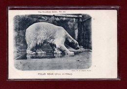 ANIMAUX-CPA ZOOLOGICAL GARDEND LONDON - POLAR BEAR - Bears
