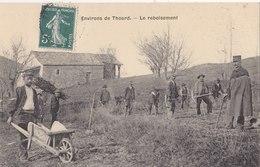 THOARD LE REBOISEMENT - France