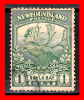 CANADA ISLA DE TERRANOVA   SELLO  CARIBOU HUNTING AÑO 1897 - Usados