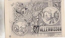 DIGNE MALLEMOISSON CURE PIN N° 19 - Digne